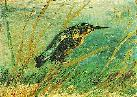 Vincent Van Gogh. The Kingfisher.