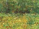 Vincent Van Gogh. Park at Asnieres in Spring (on loan from a private collection).