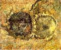Vincent Van Gogh. Two Cut Sunflowers.