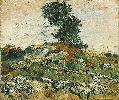 Vincent Van Gogh. Rocks with Oak Tree.